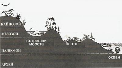 geostratigraphia