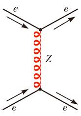 Електрослабата теория и механизъм на Хигс