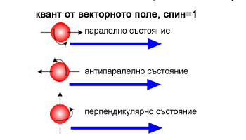 Скаларни и векторни полета